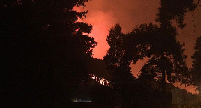 Dalaman'da orman yangını kontrol altına alındı