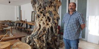 Zeytin odunlarını sanat eserine dönüştürüyor