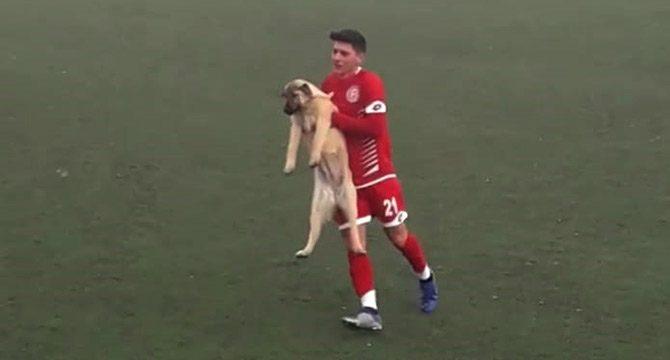 Ankara'da sahaya köpek girdi, maç durdu